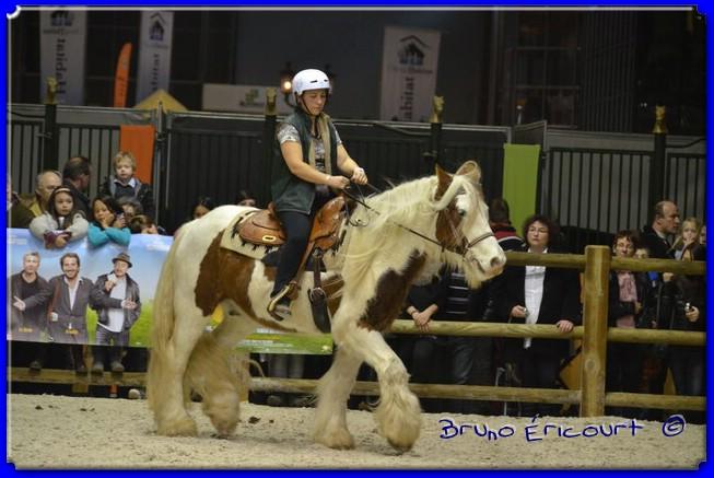 Salon du cheval de Paris 2012 ERI_8989