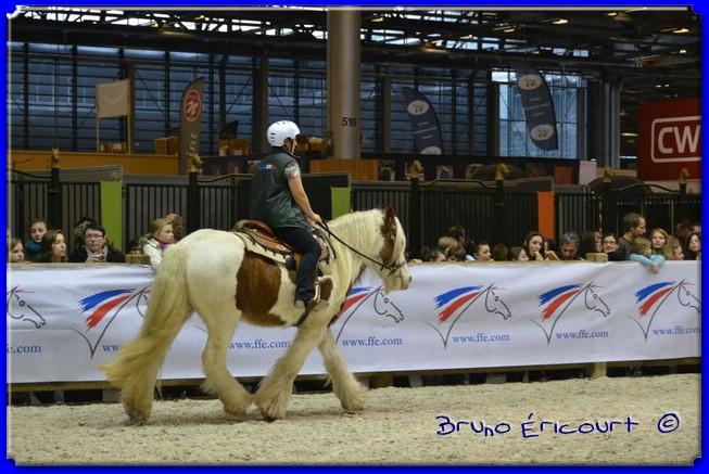 Salon du cheval de Paris 2012 ERI_8999