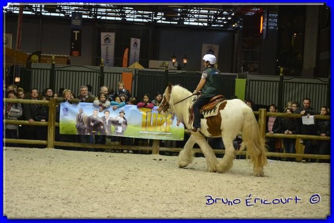 Salon du cheval de Paris 2012 ERI_9017