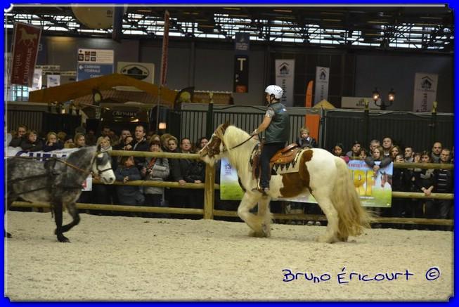 Salon du cheval de Paris 2012 ERI_9023