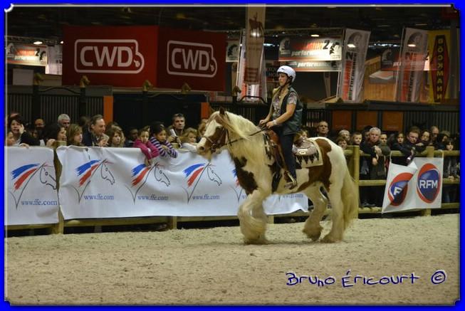 Salon du cheval de Paris 2012 ERI_9034
