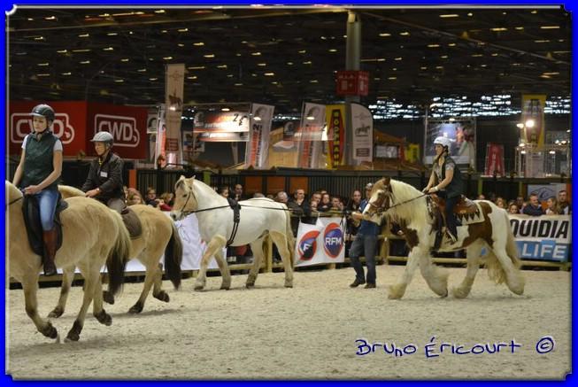 Salon du cheval de Paris 2012 ERI_9044