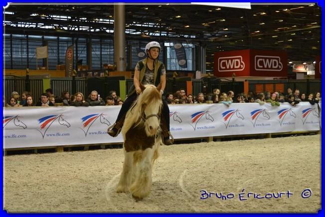 Salon du cheval de Paris 2012 ERI_9069