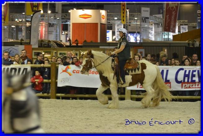 Salon du cheval de Paris 2012 ERI_9076
