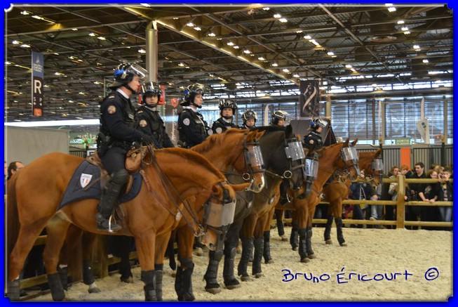 Salon du cheval de Paris 2012 ERI_9092